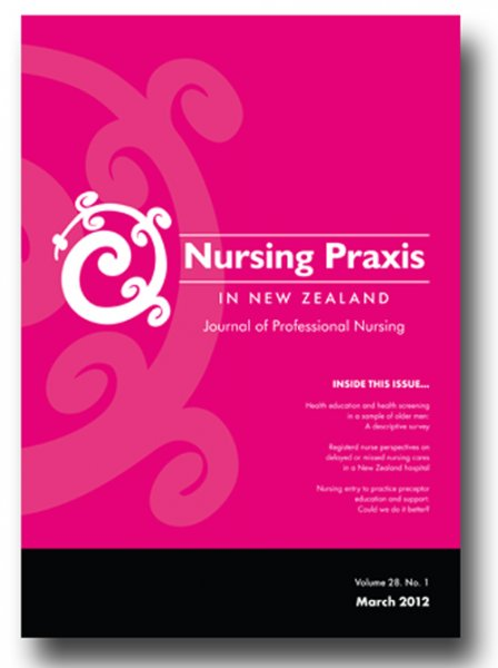 nursing portfolio essays